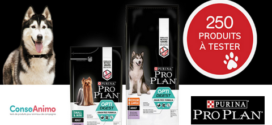 Test Produit Conso Animo : PRO PLAN Optidigest Grain Free Riche en Dinde Purina Pro Plan